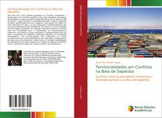 Territorialidades em Conflitos na Baía de Sepetiba的封面