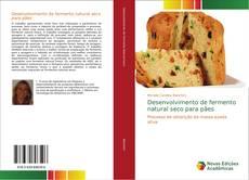 Desenvolvimento de fermento natural seco para pães的封面