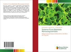 Sistema Fluxo-Batelada Monossegmentado kitap kapağı