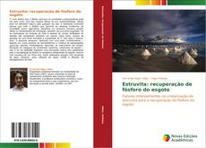 Estruvita: recuperação de fósforo do esgoto kitap kapağı