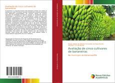 Avaliação de cinco cultivares de bananeiras的封面