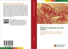 Borítókép a  Negros e Italianos em São Carlos - hoz