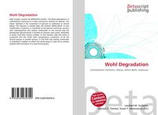 Wohl Degradation的封面