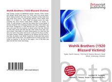 Bookcover of Wohlk Brothers (1920 Blizzard Victims)