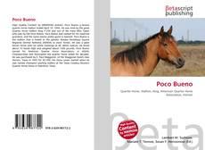 Capa do livro de Poco Bueno