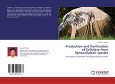 Bookcover of Production and Purification of Cellulase from lignocellulosic wastes