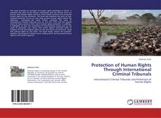 Borítókép a  Protection of Human Rights Through International Criminal Tribunals - hoz