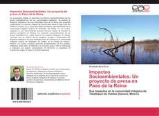 Capa do livro de Impactos Socioambientales: Un proyecto de presa en Paso de la Reina