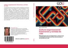 Portada del libro de Cultura organizacional: Emociones y sentido de vida