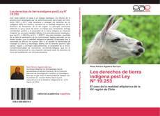Обложка Los derechos de tierra indígena post Ley   Nº 19.253