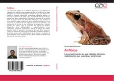 Обложка Anfibios