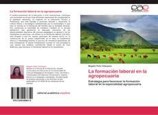 La formación laboral en la agropecuaria的封面