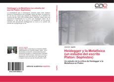 Bookcover of Heidegger y la Metafísica (un estudio del escrito Platon: Sophistes)