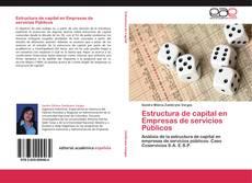 Portada del libro de Estructura de capital en Empresas de servicios Públicos