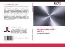 Bookcover of Lo que debes saber sobre...