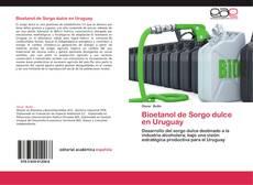 Copertina di Bioetanol de Sorgo dulce en Uruguay
