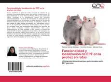 Bookcover of Funcionalidad y localización de EPF en la preñez en ratas