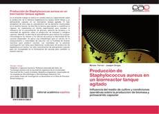 Bookcover of Producción de Staphylococcus aureus en un biorreactor tanque agitado