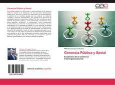 Bookcover of Gerencia Pública y Social
