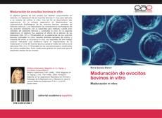 Bookcover of Maduración de ovocitos bovinos in vitro