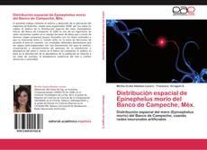 Bookcover of Distribución espacial de Epinephelus morio del Banco de Campeche, Méx.