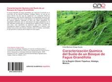 Couverture de Caracterización Química del Suelo de un Bosque de Fagus Grandifolia