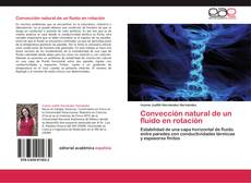 Portada del libro de Convección natural de un fluido en rotación