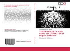 Bookcover of Tratamiento de un suelo salino con Ca(OH)2 en el trópico mexicano