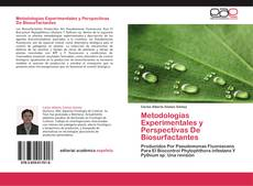 Capa do livro de Metodologías Experimentales y Perspectivas De Biosurfactantes