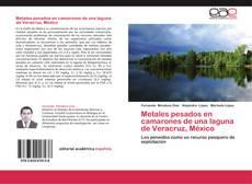 Portada del libro de Metales pesados en camarones de una laguna de Veracruz, México