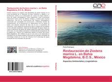 Restauración de Zostera marina L. en Bahía Magdalena, B.C.S., México kitap kapağı