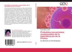 Buchcover von Probables mecanismos responsables de la hiperfiltración de la Preñez