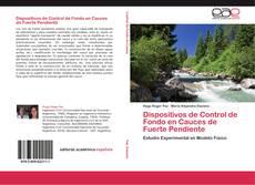 Bookcover of Dispositivos de Control de Fondo en Cauces de Fuerte Pendiente