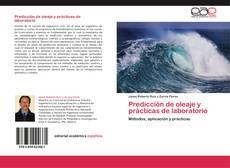 Predicción de oleaje y prácticas de laboratorio kitap kapağı