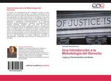 Bookcover of Una Introducción a la Metodología del Derecho