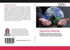 Bookcover of Ingeniería ambiental