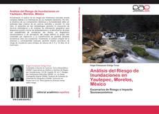 Análisis del Riesgo de Inundaciones en Yautepec, Morelos, México kitap kapağı