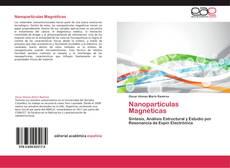 Nanopartículas Magnéticas kitap kapağı