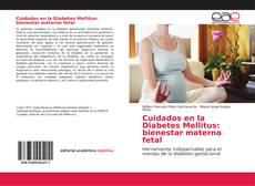 Обложка Cuidados en la Diabetes Mellitus: bienestar materno fetal