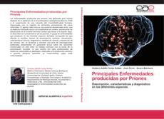 Borítókép a  Principales Enfermedades producidas por Priones - hoz