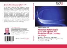 Portada del libro de Modelos Matemáticos para el Régimen No Permanente en Canales de Riego