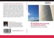 Buchcover von Durabilidad del concreto en ambiente marino