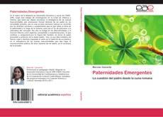 Portada del libro de Paternidades Emergentes