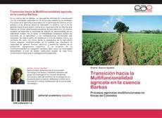 Bookcover of Transición hacia la Multifuncionalidad agrícola en la cuenca Barbas