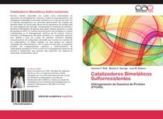 Copertina di Catalizadores Bimetálicos Sulforresistentes