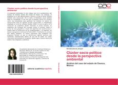 Clúster socio político desde la perspectiva ambiental kitap kapağı