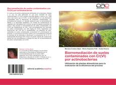 Copertina di Biorremediación de suelos contaminados con Cr(VI) por actinobacterias