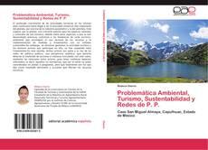 Обложка Problemática Ambiental, Turismo, Sustentabilidad y  Redes de P. P.