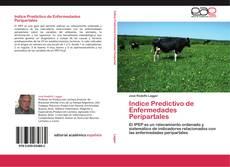 Couverture de Indice Predictivo de Enfermedades Peripartales