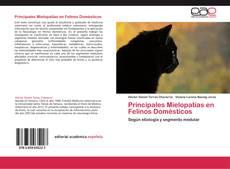 Portada del libro de Principales Mielopatías en Felinos Domésticos